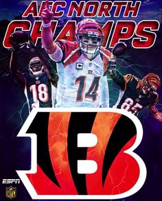 Let's go all the way this year boys Nfl, Football Conference, Cincinnati Bengals, National Football League, American Football, Team Logo, Sports Teams, Baby, Stickers