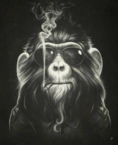 Smoke 'Em if You Got 'Em by Dr, Lukas Brezak (Canvas) from Best of Curioos Art on Gilt Animal Art, Canvas Prints, Illustration, Drawings, Curioos, Art, Monkey Art, Pop Art, Graphic Art