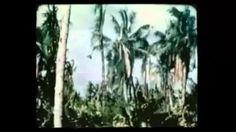 THE BEST VIETNAM WAR MUSIC PLAYLIST ON YOUTUBE - YouTube