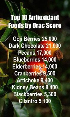 Top 10 Antioxidant Foods By Orac Score. Our incredible alkaline rich, antioxidant loaded, weight loss products help you burn fat and lose weight more efficiently without changing your diet, increasing your exercise, or altering your lifestyle. LEARN MORE