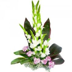 Fill today with elegance! This stunning arrangement is created with 7 pink carnation & 8 white gladiolus with green foliage in a basket. The flowers are arranged in a very stylish manner in the basket making it an apt gift to send for a birthday, anniversary or any special occasion. Send your warm wishes with this elegant bouquet to your near and dear ones. check this out @Abigail Phillips Regan Truax://www.giftxoxo.com/flowers/elegance-bouquet-3619