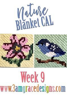 Week 9 - Nature Blanket Bird Flower Flowers C2C Free crochet pattern
