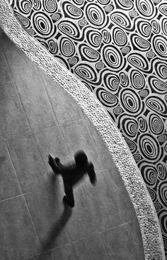 Limitations by Selnur Okudan