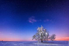 Freezy Night by Jan Watzek on 500px