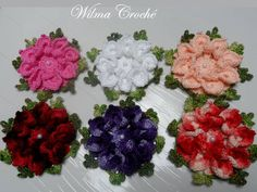 kit-com-0-flores-de-croche-linha-anne-flor-bico-de-papagaio