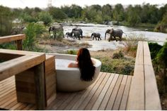 Londolozi Granite Suites is probably one of the best lodges in the world and offers ultra luxury safari accommodation in the Sabi Sands Game Reserve near Kruger National Park. West Indies, Parc National Kruger, South Africa Honeymoon, Places To Travel, Places To Go, Travel Stuff, Le Cap, Private Games, Most Romantic Places