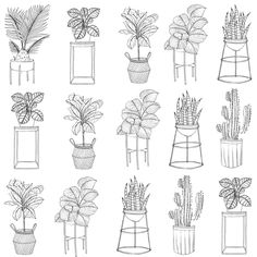 Simple Line Drawings, Easy Drawings, Plant Sketches, Floral Drawing, Cute Coloring Pages, Arte Sketchbook, Halloween Drawings, Plant Drawing, Pattern Art