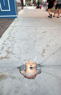 Sidewalk Paint, David Zinn, Coaster Design, Chalk Drawings, Ann Arbor, Chalk Art, Original Artwork, The Outsiders