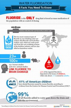 Download this Water Fluoridation infographic and find out how fluoride in your drinking water harms your health. http://www.mercola.com/infographics/water-fluoridation.htm