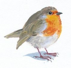 Robin by Mary Woodin, watercolour, £165. Birds & Bees exhibition.