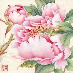 Jinghua Gao Dalia - Brush Magic- Over 3 decades of Chinese watercolor brush painting experience Peony Painting, Watercolor Flowers, Watercolor Paintings, Watercolors, Art Floral, Chinese Painting, Chinese Art, Art Aquarelle, Chinese Flowers