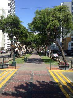 Beautiful street in Miraflores.