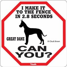 Great Dane 2.8 Seconds Sign by Signs UP, http://www.amazon.com/dp/B0098PLXVI/ref=cm_sw_r_pi_dp_g4xPrb0YMTYVG