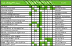 Top 10 Reasons to Try Medical Marijuana | Green Flower Media