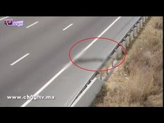 Fraja tv: صادم..أول فيديو من المكان الذي انتحر فيه الشخص الذي ذبح ابنه و زوجته