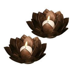 Lotus Candleholders in Brown.