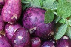 Purple potatoes. Full of antioxidants!