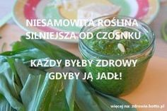 Pił ten napój codziennie i dożył aż do 152 lat! Cholesterol, Cucumber, Herbalism, Spices, Health Fitness, Medical, Herbs, Healthy Recipes, Food And Drink