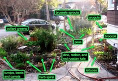 Plants that require the least amount of water and require good drainage will do best in the centre of a herb spiral. Description from themicrogardener.com. I searched for this on bing.com/images