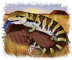 BlueTongued Skink Daily Creature by NadilynBeatosArt on Etsy, $10.00