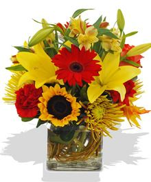 Essence of Autumn Red & Yellow Flowers in a Cube delivered Baton Rouge LA