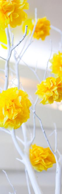 ** Yellow & white