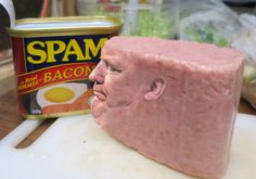 You Can't Unseen Donald #Drumpft in Spam Form