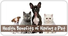 Health Benefits of Having a Pet http://healthpositiveinfo.com/health-benefits-of-having-a-pet.html