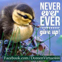 Never Ever #DoreenVirtue