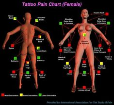 Tattoo Pain Chart: How Much Will It Hurt? - Wild Tattoo Art