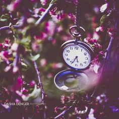 :IT'S TIME: by onixa on DeviantArt
