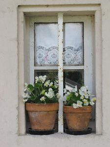 European windows = lace curtains and flowers in pots. Compliments of Estate ReSale & ReDesign, Bonita Springs, FL