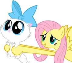 Twitter / mlp_Fluttershy: Hopefully this kitten will ...