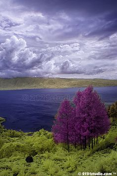 Lake Toba - this is a crater late so enormous that it has an island almost the size of Singapore in the center + one of the deepest lakes in the world, N Sumatera, Indonesia