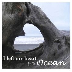 I left my heart at the ocean