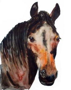 HORSE portrait Original watercolor painting 11X14inch