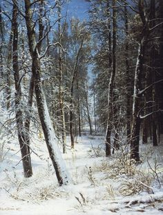 Winter in a forest (Rime) - Shishkin Ivan - WikiArt.org