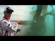 Finding and Fishing Bass in Brush Piles - YouTube