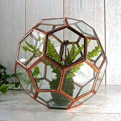 Terrariums are the greenest home decor trend this season. Bring your home up-to-date with our Geometric terrrarium complete with a gorgeous faux boston fern.Perfect for apartment living, this terrarium is perfect to display plants for a luxurious indoor garden feel, and can be hung anywhere you wish in your home. Rushing around with no time to water? Live in a dark space? - no need to worry about low lighting or maintenance, the faux boston fern included with the terrarium will live very…