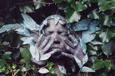 Wendy Froud has gained an international following for art inspired by mythology, folklore, and the numinous world of nature. She is best known as a doll artist and designer of puppets for film and television   but in this exhibition we present the artists' lesser known sculptural work.