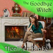 Darcy's closest friend and fellow witch, Starla Sullivan, hoped she'd never see her ex-husband, Kyle, again. Two years ago he tried to kill her, and he has been a fugitive ever since. Now Starla claims to have seen him back in Enchanted Village, but it seems she's the only one who can see him. To everyone else, her ex is invisible. Darcy only wishes his motives were as transparent as the rest of him. Since the police can't arrest someone they can't see, it's up to Darcy to find the secret…