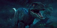 Raptors are awesome! They are in my nightmares! But they are awesome!