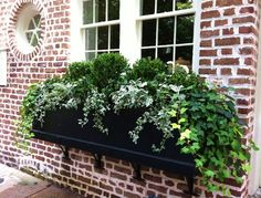 Window Flower Boxes, Wood Window Boxes, Window Planter Boxes, Winter Window Boxes, Boxwood Planters, Porch Planter, Boxwood Landscaping, Garden Planters, Container Gardening