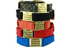 Double Braid ScruffTag™ Personalized Dog Collar $24