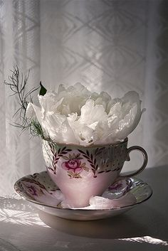 A Cup of Flower