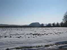 Snow in February 2012
