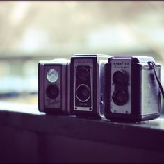 Want to collect cameras.