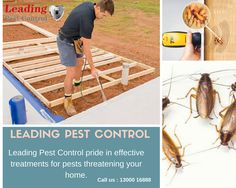Looking for pest control service in your areas? If yes, Leading Pest Control is the best option. Our team provide service under 24hours and with fully treatment