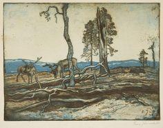 Reindeers - Poroja, Eero Järnefelt Finland, Reindeer, Past, National Parks, Graphics, Illustrations, Landscape, History, Tattoos