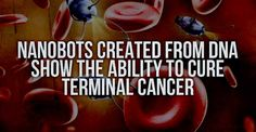 Cutting-edge nanotechnology may be the next giant step in eradicating cancer as we know it. These little robots created from DNA are just as incredible as they sound.